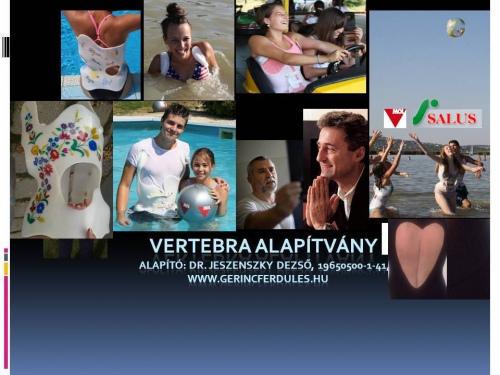 VERTEBRA Magyar Gerincsebészeti és Paraplégia Rehabilitációs Alapítvány