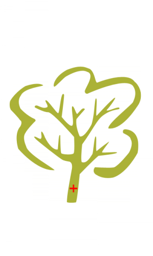 Erdőmentők Alapítvány
